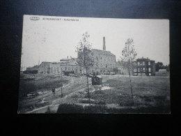 Beirendrecht. Suikerfabriek . Cachet Poste De 1914. - Belgique