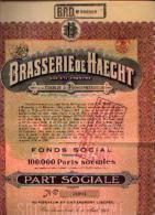 BOORTMEERBEEK°« Brasserie De HAECHT) - Part Sociale - Aandelen