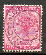 NATAL 1882  (ob) S&G# 99  - P14  - W CA - South Africa (...-1961)