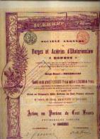 « SA Des Forges & Aciéries D'EKATERINOSLAW - DONETZ» - Action De 100 Fr  (CS : 5.000.000 Fr) - Russia
