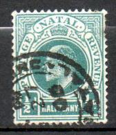 NATAL 1904  (ob)  - P14 - W CA Multi - South Africa (...-1961)