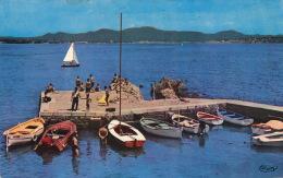 SAINT AYGULF - Le Petit Port - Au Loin, FREJUS PLAGE Et SAINT RAPHAEL (1961) - Saint-Aygulf