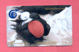 ASCENCION: ASC-M-1D £15 Frigate Bird. 1CASD
