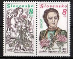 PIA  - SLOVACCHIA - 1996  : Europa     (Yv  211-12) - Slovacchia