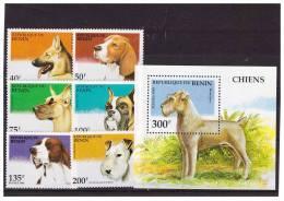 BENIN 1995 DOGS 6 VALUES +S/S MNH - Hunde