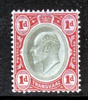 Transvaal  253    *  Wmk. 2 - South Africa (...-1961)