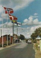 Borderline  Rudbøl    Between Germany & Denmark .  Grenze -Borderstation.  # 0881 - Postcards