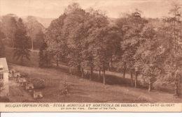"""Belgian Orphan Fund. Ecole Agricole Et Horticole De Bierbais. Mont-Saint-Guibert. """" Un Coin Du Parc."""" - Mont-Saint-Guibert"""