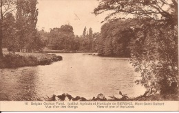 """Belgian Orphan Fund. Ecole Agricole Et Horticole De Bierbais. Mont-Saint-Guibert.  """"Vue D'un étangs."""" - Mont-Saint-Guibert"""