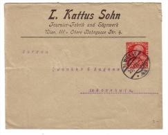 Entier Postal Autriche 1911, L. Kattus Sohn Wien (201111) - Entiers Postaux