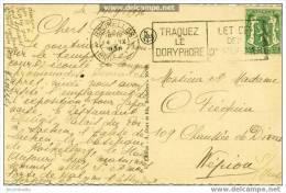 """Bruxelles  : """"Traquez Le Doryphore"""" """"Let Op Den Coldraddkever"""" - Verso Chateau De Laeken - Flammes"""