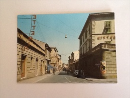 PIOMBINO VIA CESARE LOMBROSO VIAGGIATA 1967 ANIMATA - Livorno