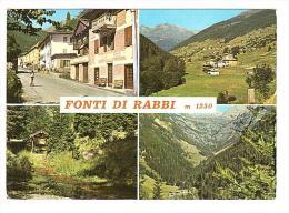 Y668 Fonti Di Rabbi (Trento) - Panorama - Multipla / Viaggiata 1973 - Italia