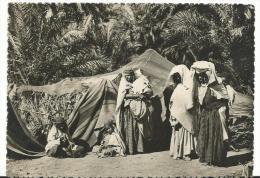 Afrique :   SAHARA    ,  Famille   Nomade  Dans  L ' Oasis - Sahara Occidental