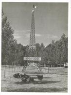 Robert Doisneau : Tour Effeil Vers Villeneuve Sur Lot   , Cpm édition Nouvelles Images , Non écrite. - Doisneau