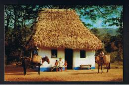 RB 932 - Ethnic Panama Postcard - Typical Hut In A Mountain Village - Family & Horses - Panama