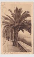 (RECTO / VERSO) TOULON  EN 1937 - N° 26 - LE MOURILLON LITTORA FREDERIC MISTRAL AVEC PERSONNAGES - Toulon