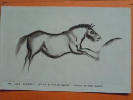 V09-24-dordogne--les Eyzieres-grottes- De Font De Gaume-chevaux En Noir Modele-- - Altri Comuni