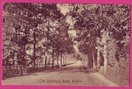PC5045 Postcard: Wilton: Salisbury Road - Salisbury