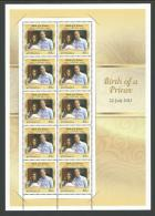 2013 Birth Of A Prince 22 July 2013 Special Limited Birth Of George Issue New Complete MUH On Rear - Blocks & Sheetlets