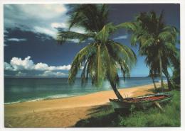 - GUADELOUPE. - Lot De 29 Cartes De Guadeloupe. -  Toutes Scanées - (port En Plus) - - Cartes Postales