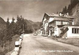 CPSM - ALBERGO EXCELSIOR - PIEVE DI LIVINALLONGA - Edition Ghedina / Cortina - Andere Städte