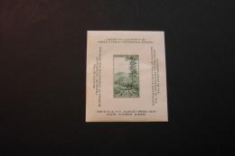 United States 797 El Capitan Yosemite Souvenir Sheet Block Unused 1937 A04s - Blocks & Sheetlets