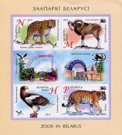 Belarus 2013 Zoo  Eagle, Tiger, Panther,  Moufflon (S/S Of 4v +2lab) **MNH** - Belarus