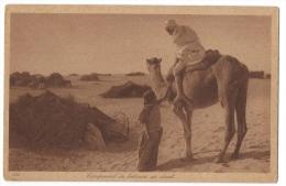 TUNISIE - Edition  Lehnert &Landrock  - Campement De Bédouins Au Désert - N°184 - Tunisia