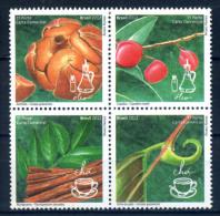 Brazil 2012 Brasil / Medicinal Plants Herbal Infusions Kräuter Infusiones  Plantas Medicinales / C5915 - Vegetales