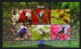 BURUNDI - KB V. 2011, Vögel (tie1415) - Unclassified