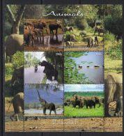 MALAWI - KB V. 2012, Elefanten (tie1409) - Elephants