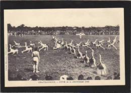 Chateauroux - Fete De La Jeunesse 1936 - Gymnastique Mouvements D'ensemble - Mauduit - Chateauroux