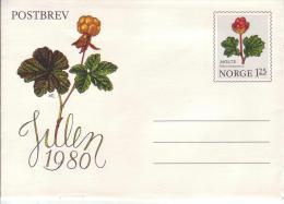 Norwegen Michel Nr. K 50 ** Moltebeere . Kartenbrief 125 Öre - Postwaardestukken