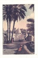 Cp, Algérie, Biskra, Mosquée De Sidi Lassen - Biskra