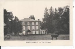 ANGLES - Le Château - Angles