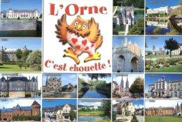 (524M) Chouette Et Hiboux - Owl / L'Orne - Pájaros