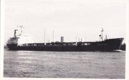 """¤¤  -   Carte Photo Du Cargo """" ANCO SEA  """"   -  ¤¤ - Pétroliers"""