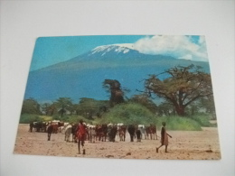 Kenya  Masai Herdsmen With Mt. Kilimanjaro In Back Ground  Francobolli Conchiglie Mucche - Kenia