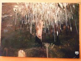 V09-25-b-doubs-besancon-les Grottes D'osselle- Fistulaire De La Voute - Besancon