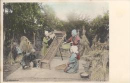 7833 - Sifting Rice Tamisage Du Riz - Japon