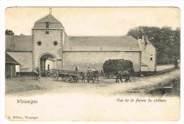 """""""Wasseiges - Vue De La Ferme Du Château"""" - Wasseiges"""