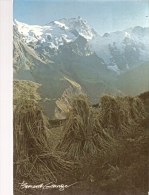 "BERNARD GRANGE......""vie En Montagne"".......15 X 10.5 - Photographie"