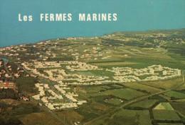 85 BRETIGNOLLES SUR MER  LES FERMES MARINES  VUE AERIENNE - Bretignolles Sur Mer