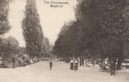 Bedfordshire Postcard - The Promenade, Bedford  BB61 - Bedford