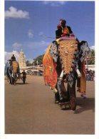(678) Elephant - Eléphant - India Festival - Elephants