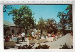 Kingston - Royal Jamaica Yacht Club ( Myrtle Bank Patio) - Jamaïque