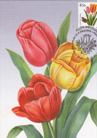 TULIPS, FLOWERS, CM, MAXICARD, CARTES MAXIMUM, OBLIT FDC, 2011, MOLDOVA - Végétaux