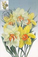 NARCISSUS, FLOWERS, CM, MAXICARD, CARTES MAXIMUM, OBLIT FDC, 2011, MOLDOVA - Végétaux