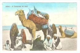 Aden, Yemen, 00-10s   A Caravan At Rest - Yemen